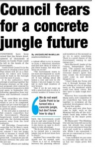 Council fears for a concrete jungle future